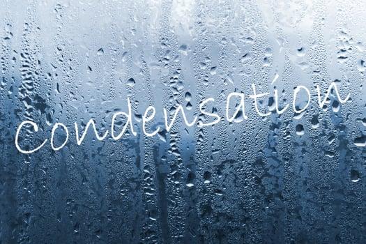 Condensation Croft Architecture