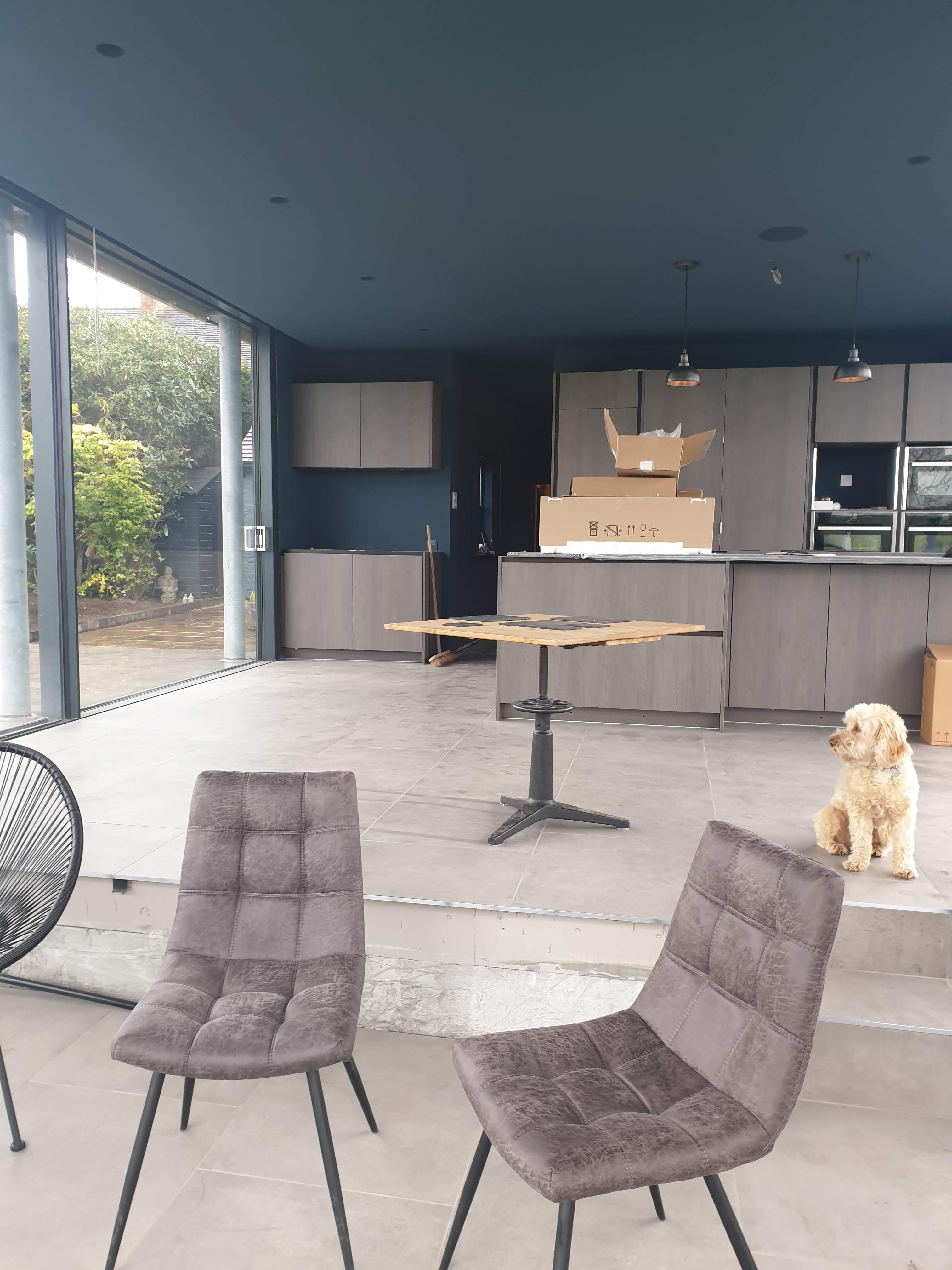 Croft Architecture Design a Grade II Listed Minimal Extension Mobalpa Kitchen and Cute Dog